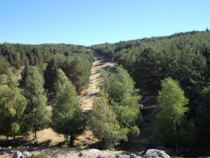 hiking-madrid-morcuera-purgatorio-firewall