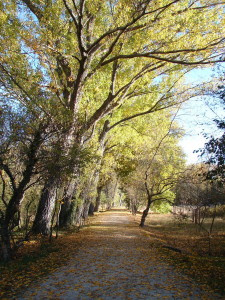 Camino_del_Purgatorio