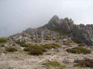 Las Torres Pedriza